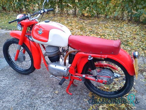 1955 MV Agusta in Essex, the World